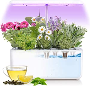 Veledryn Indoor Tea Herb Garden Set: Complete Easy to Use Organic Hydroponic Machine LED Lights, No Soil pods, Grow Pods and Infuser