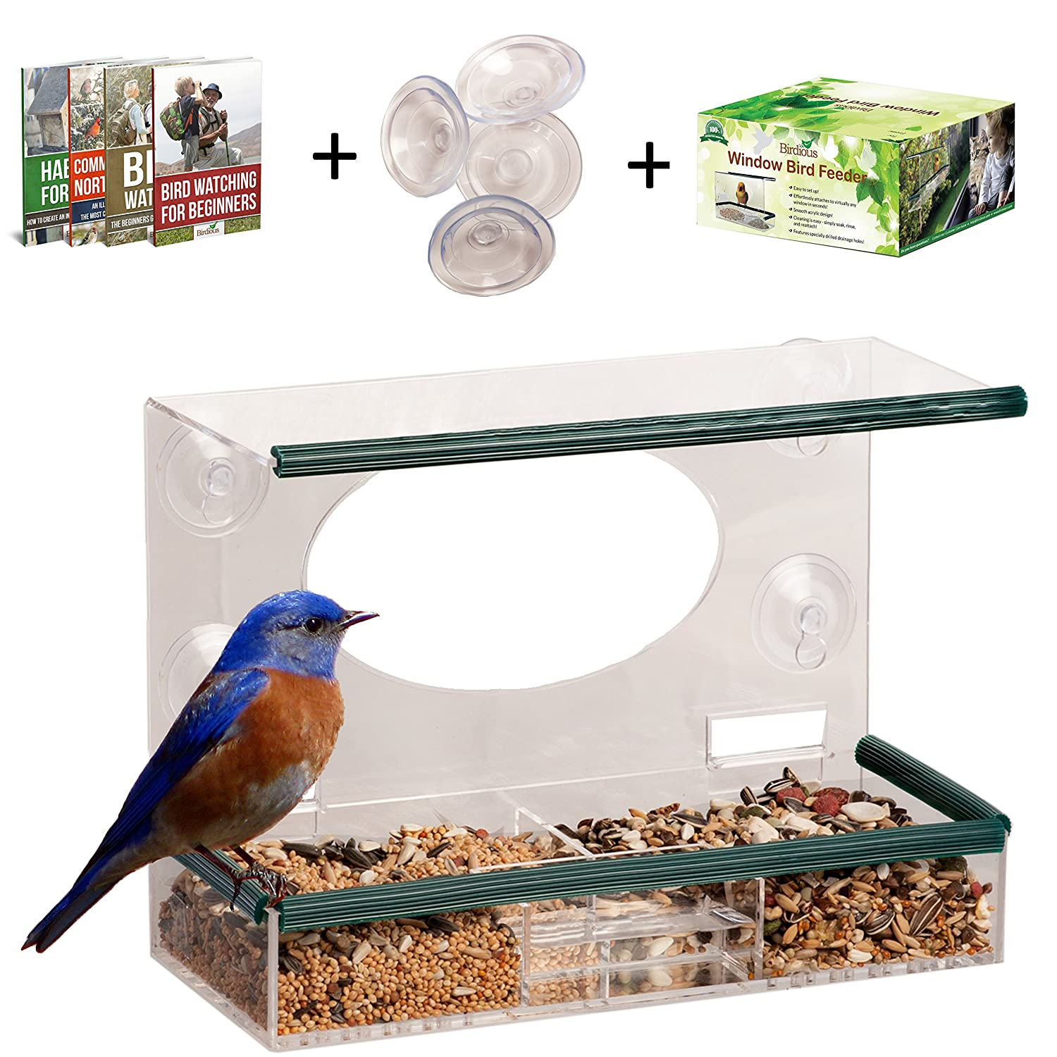 Window bird house - Amazon Com Clear Window Bird Feeder Enjoy Unique Watch Small Large Birds See Through Birdhouse Mounted By 4 Strong Suction Cups Squirrel Proof With