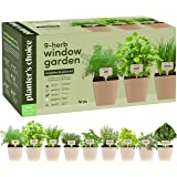9 Herb Window Garden - Indoor Herb Growing Kit - Kitchen Windowsill Starter Kit - Easily Grow 9 Herbs Plants from Seeds with