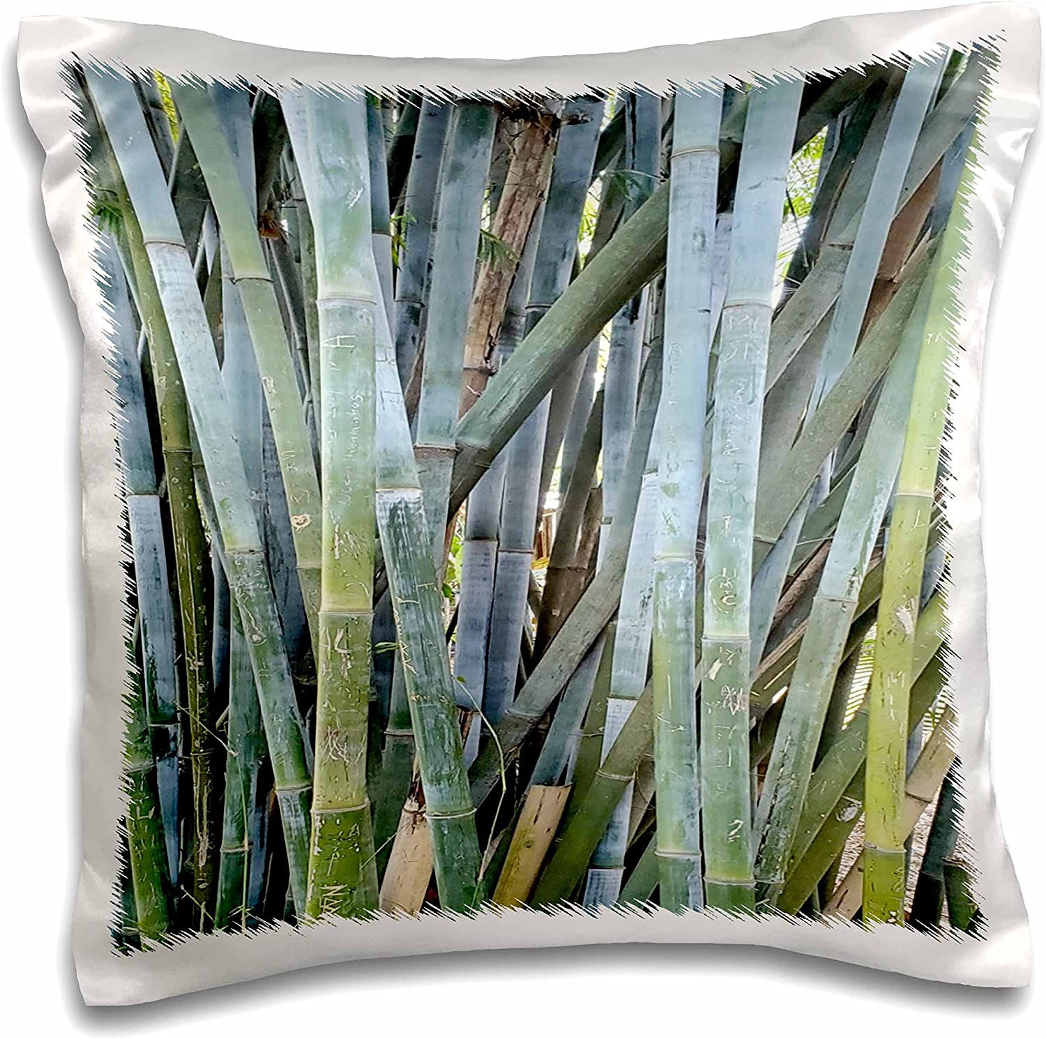3dRose Image of Closeup Of Bamboo At Palm Beach Florida Gardens And Zoo - Pillow Cases (pc_348250_1)