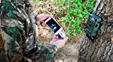 BoneView SD MicroSD Card Reader for Apple