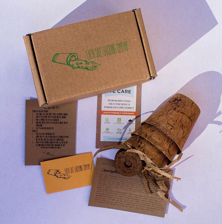Amazon.com : Indoor Herb Garden Kit (3 Pack) by Earth Safe Gardening ...