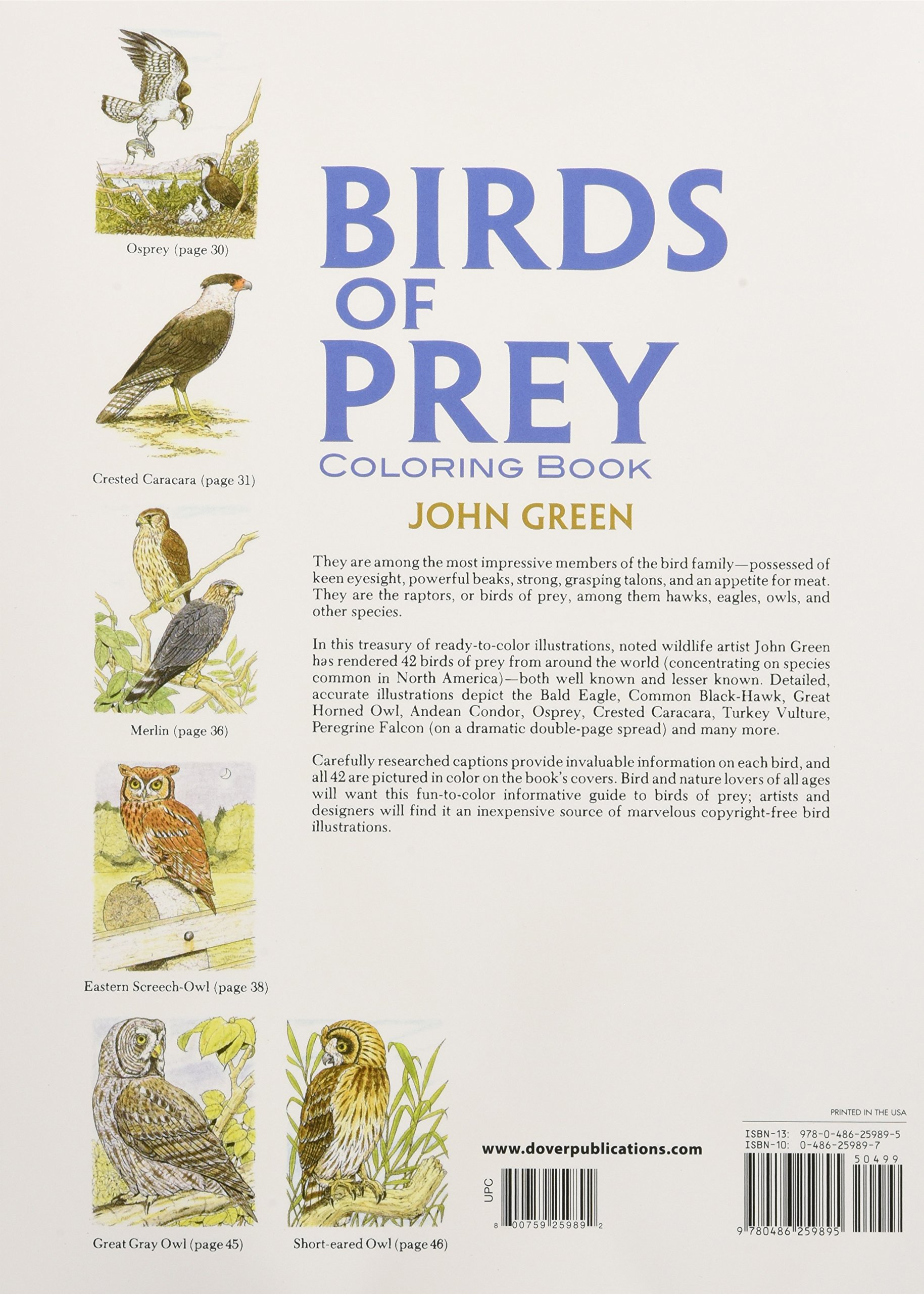 Birds Of Prey Coloring Book John Green 0800759259892 Amazon Books