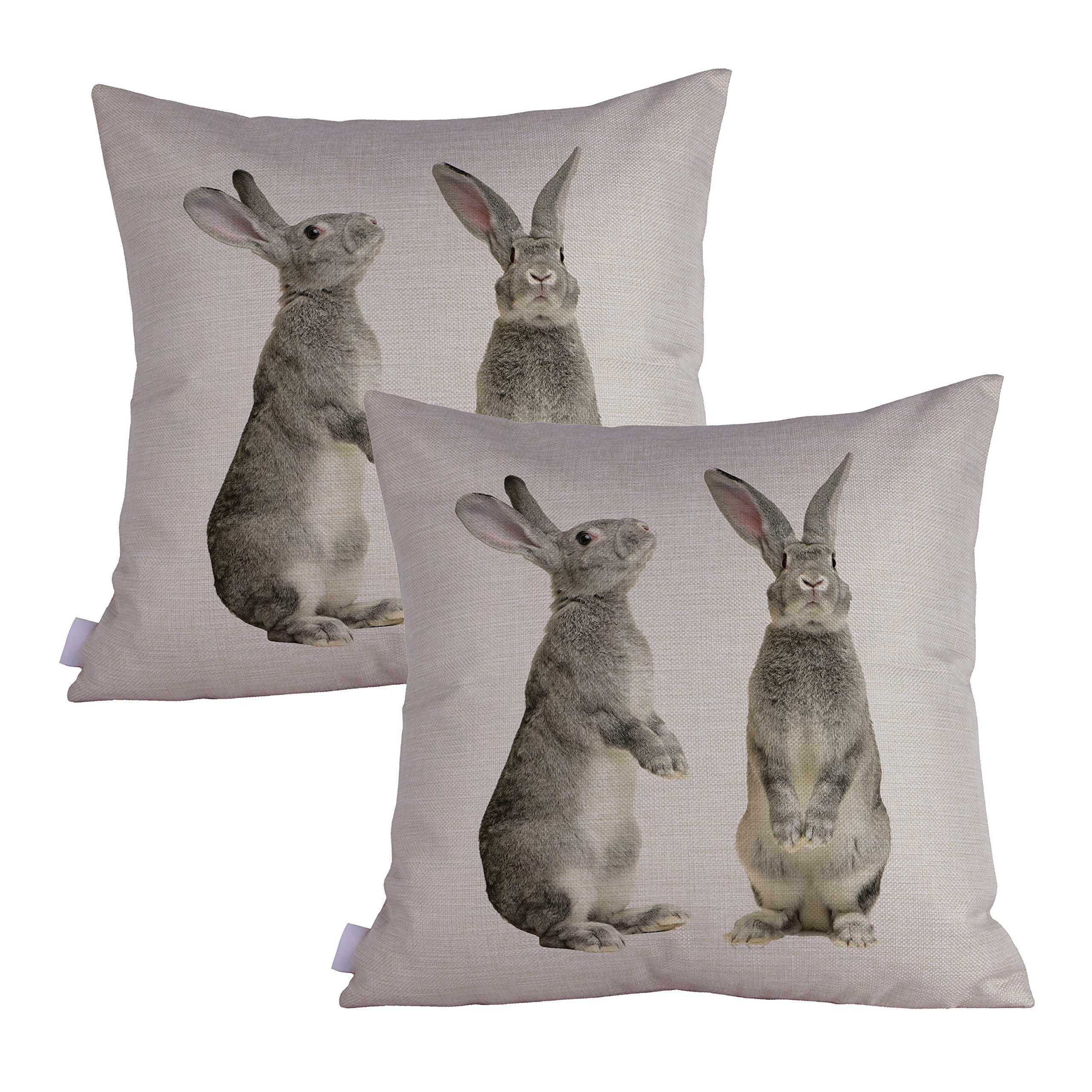 Queenie - 2 Pcs Wild Animals Decorative Pillowcase Cushion Cover for Sofa Throw Pillow Case 18 X 18 Inch 45 X 45 Cm, Set of 2 (Grey Rabbits)