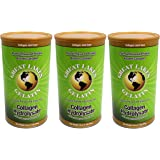 Great Lakes Gelatin, Collagen Hydrolysate, Beef, Kosher, 16 oz, 3-Pack