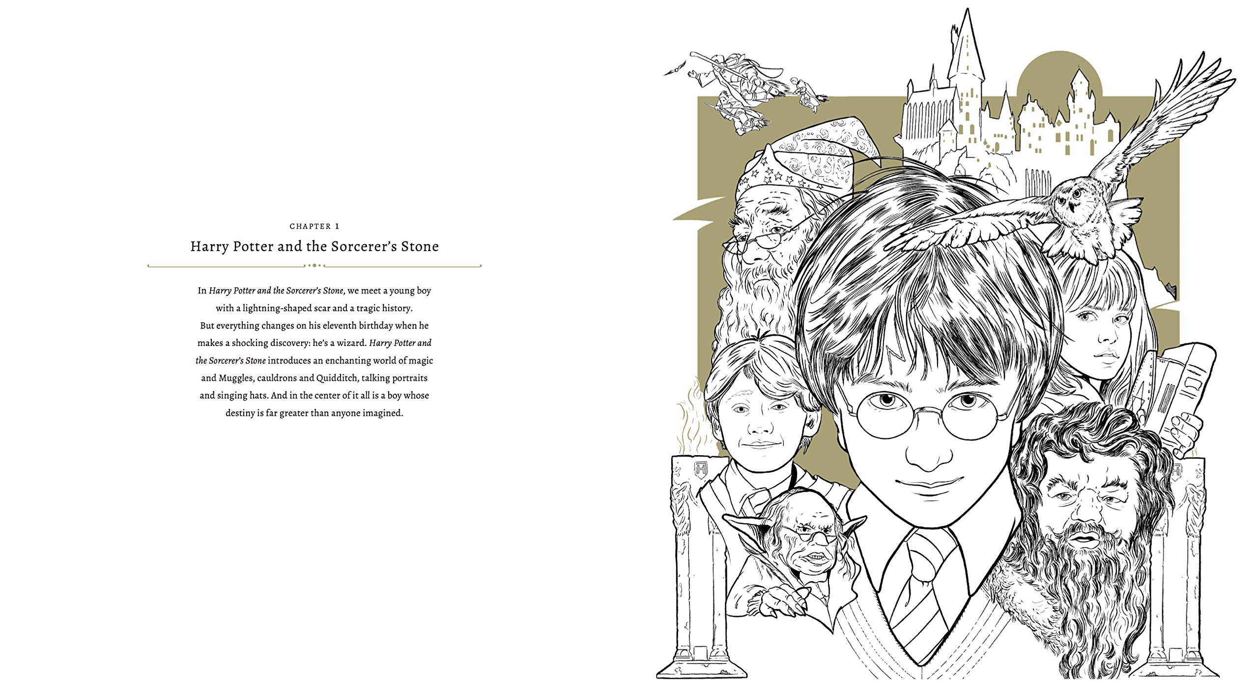 Harry potter a cinematic gallery colouring books amazon co uk j m dragunas 9781785657405 books