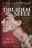 Druidenseele: Teil 3: Sliochd (German Edition)