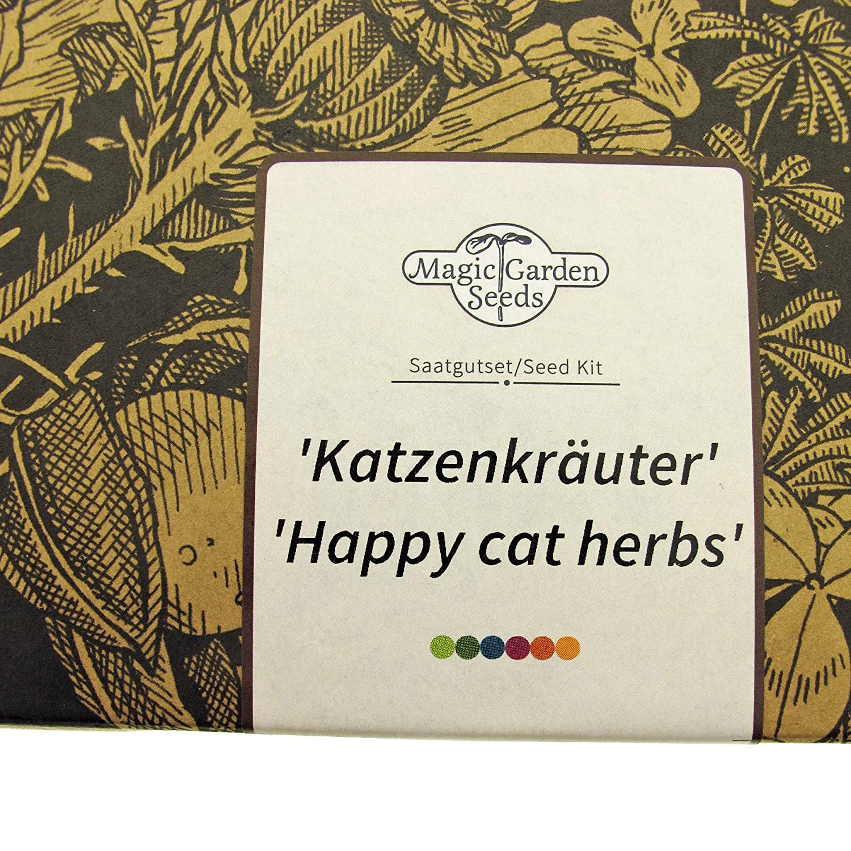 Hierbas para Gatos Magic Garden Seeds Kit de Semillas Regalo