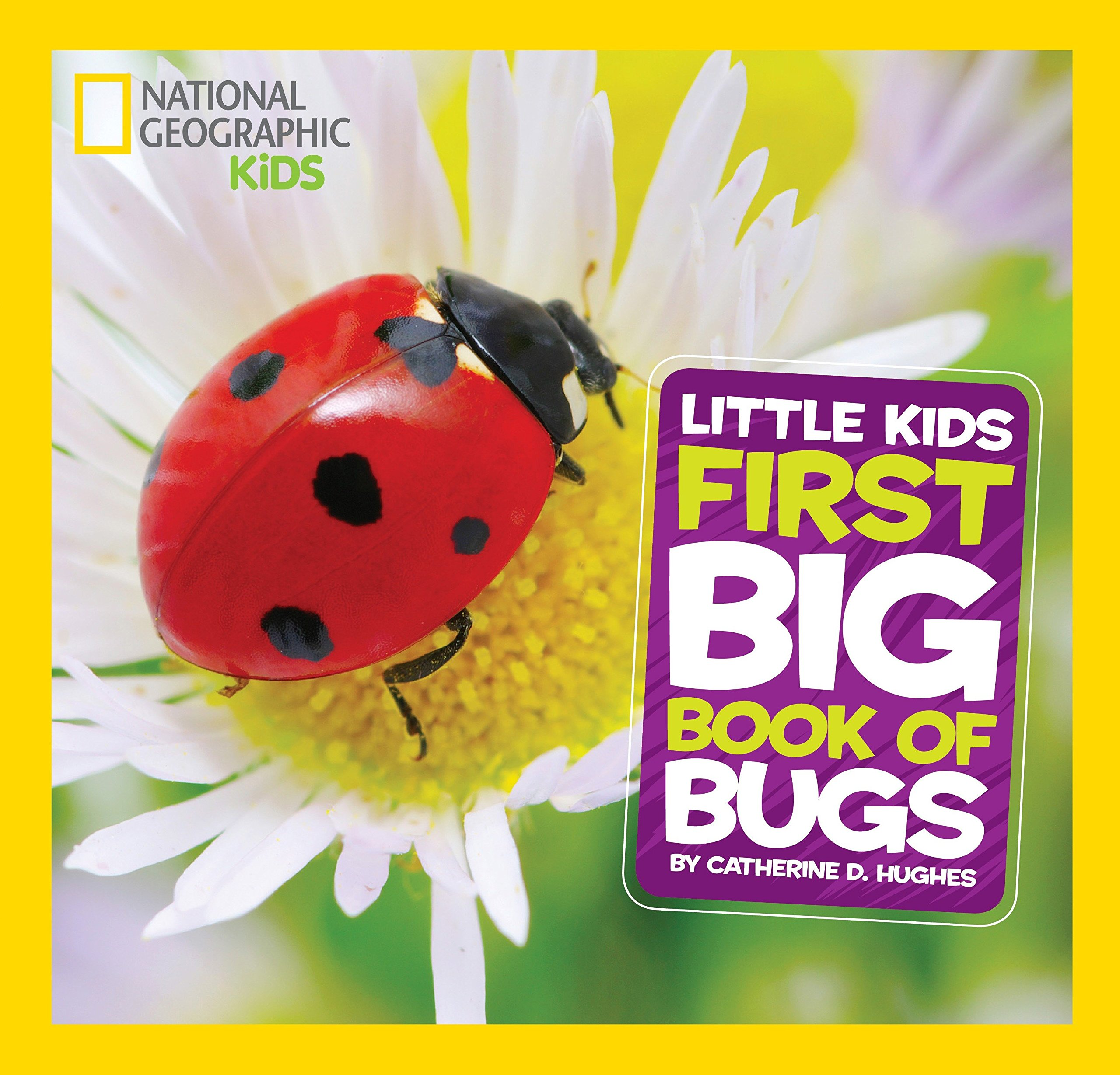 National Geographic Little Kids First Big Book of Bugs (National Geographic Little Kids First Big Books) by National Geographic (Image #1)