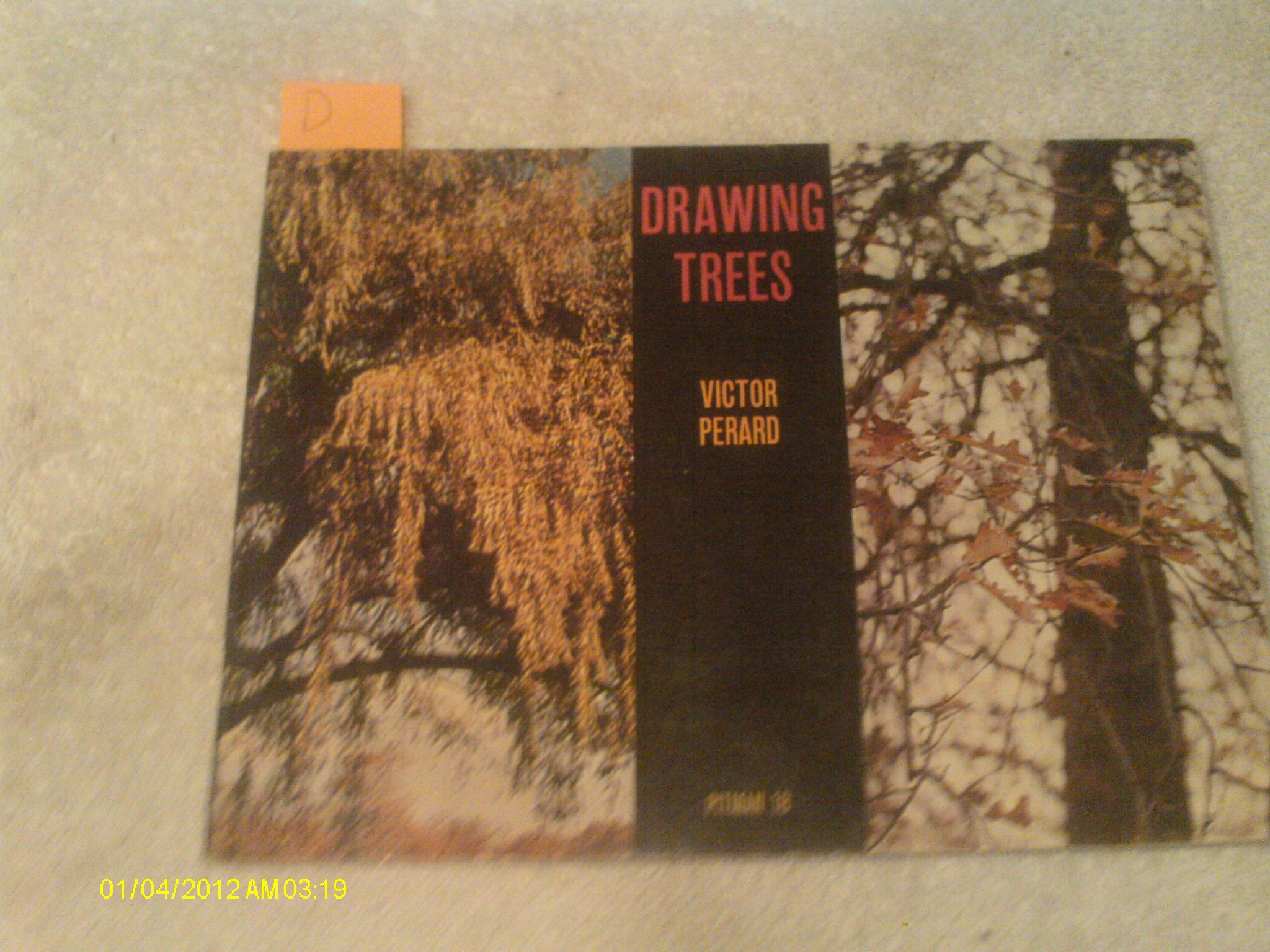 Drawing Trees and Introducing Landscape Composition