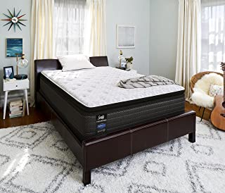 product image for Sealy Response Performance 14-Inch Plush Euro Pillow Top Mattress, Twin XL