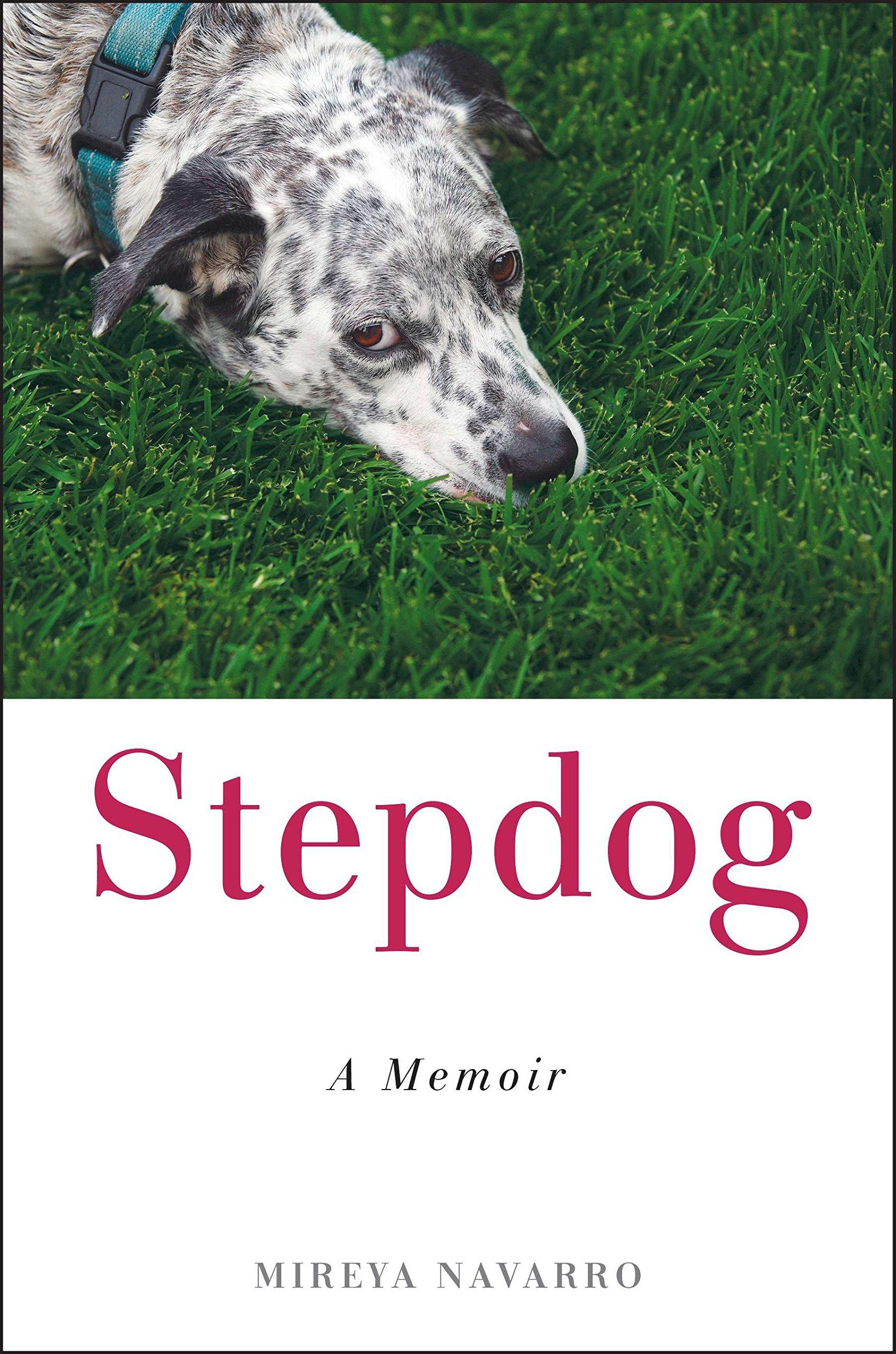 Download Stepdog: A Memoir PDF