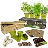 Indoor Herb Garden Starter Kit | 4 Non-GMO Herbs | Beginner Friendly | DIY Kitchen Herbs Growing Kit | Wooden Box | Perfect G