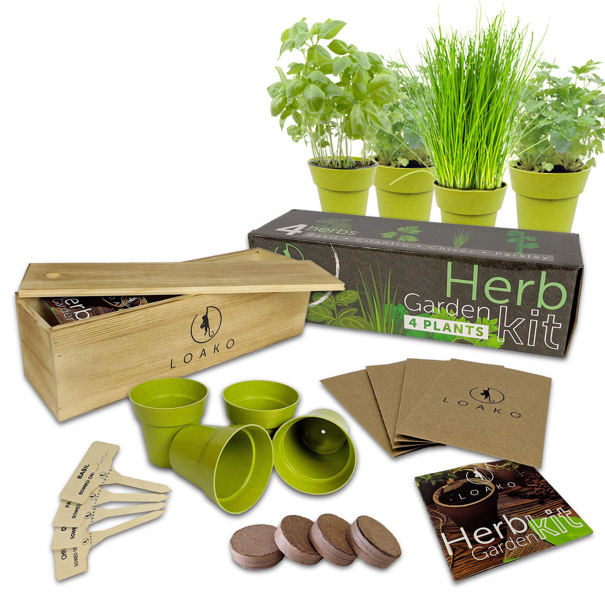 Indoor Herb Garden Starter Kit   9 Non GMO Herbs   Beginner ...