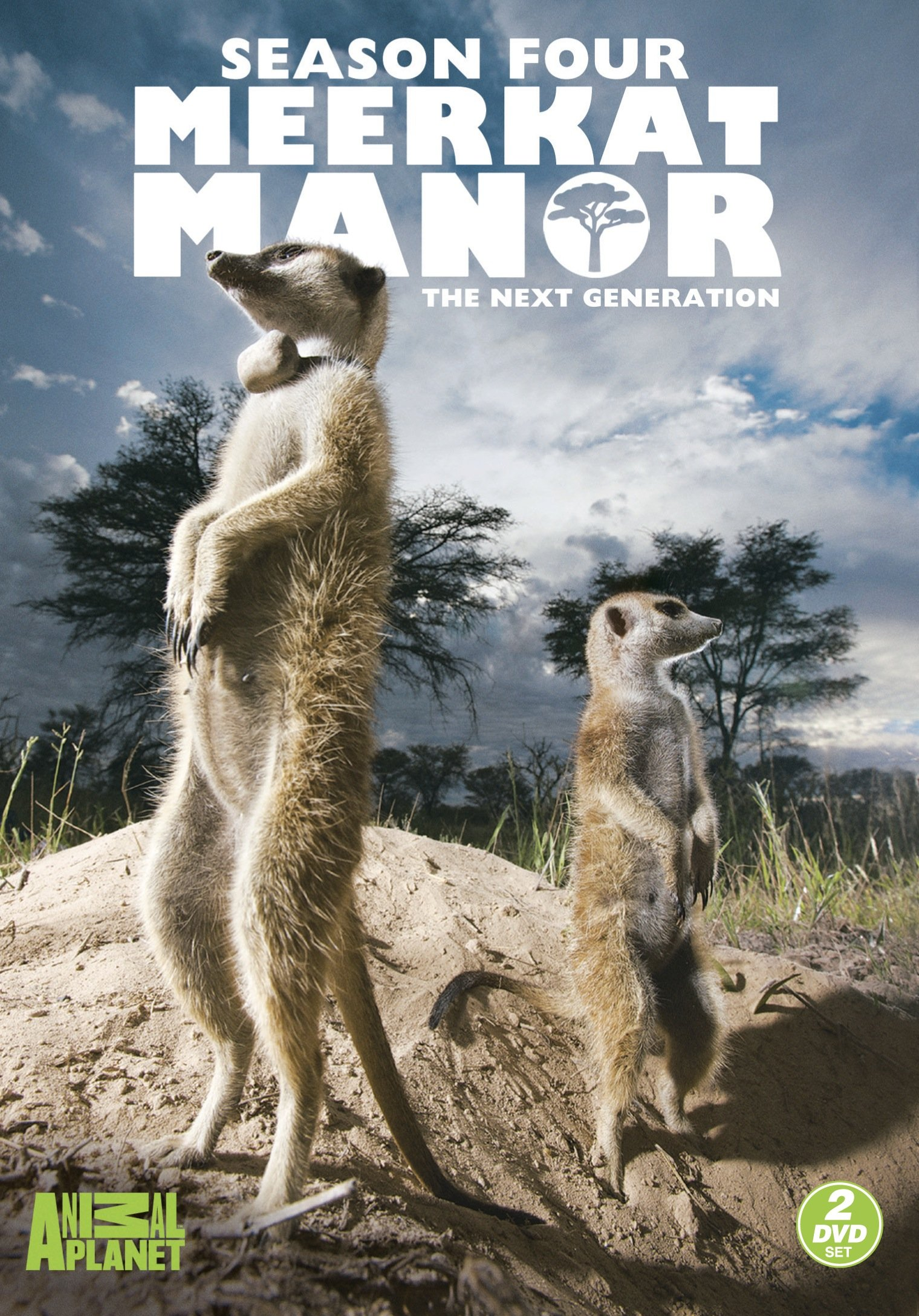Meerkat Manor: Season 4 - The Next Generation