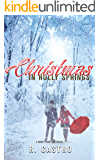 Christmas in Holly Springs: A Short Story