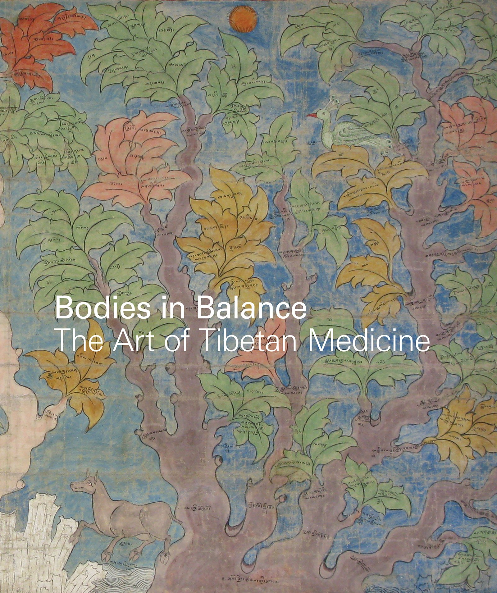 Bodies in Balance: The Art of Tibetan Medicine: Amazon.es ...