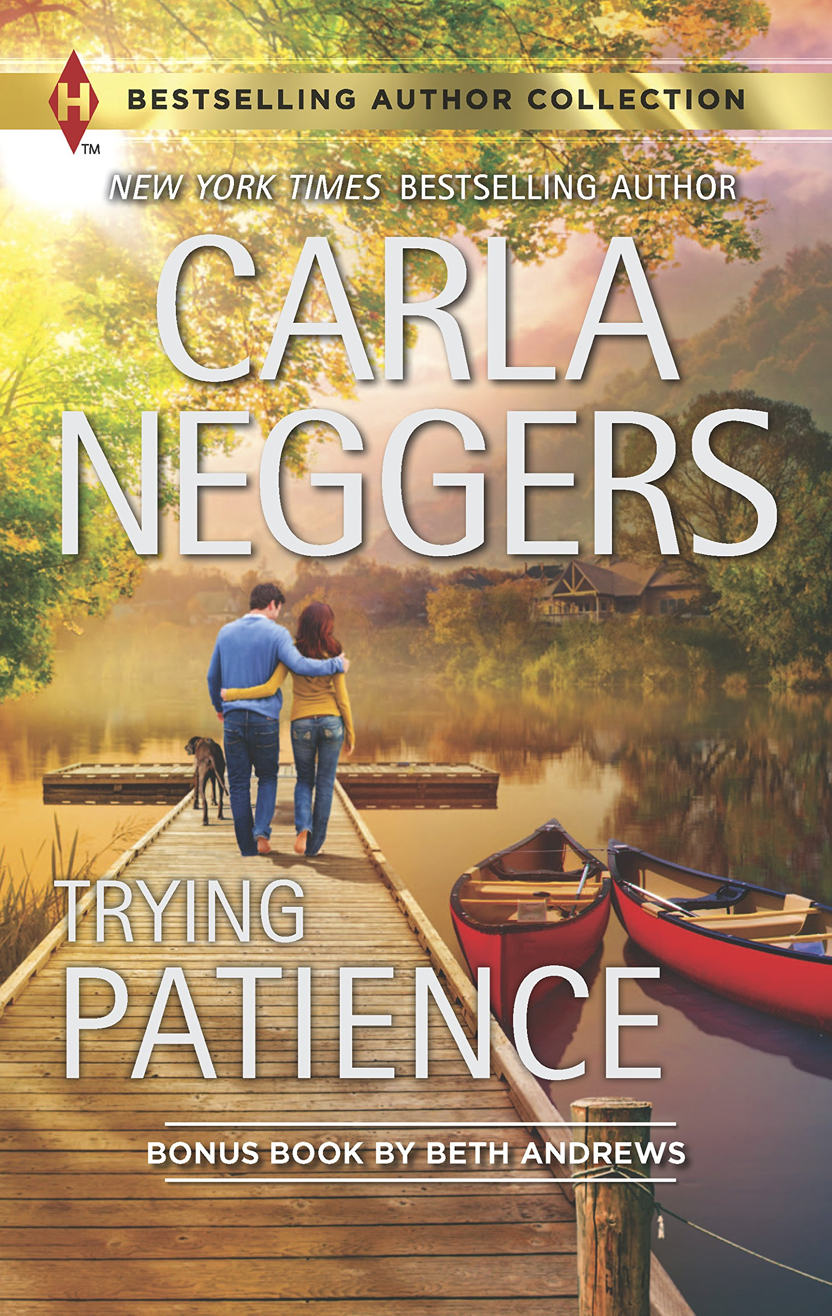 Trying Patience: A Not-So-Perfect Past (Harlequin Bestselling Author) PDF