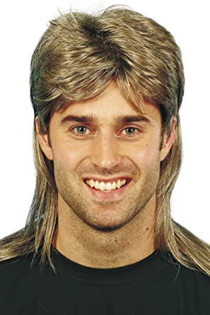 Amazon smiffys mens brown mullet wig with blonde highlights smiffys mens brown mullet wig with blonde highlights one size 5020570421963 pmusecretfo Gallery