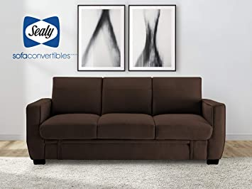 Amazon.com: Sealy Perris Transitional Convertible Sofa with ...