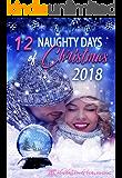 12 Naughty Days of Christmas : 2018 (Volume Book 4)