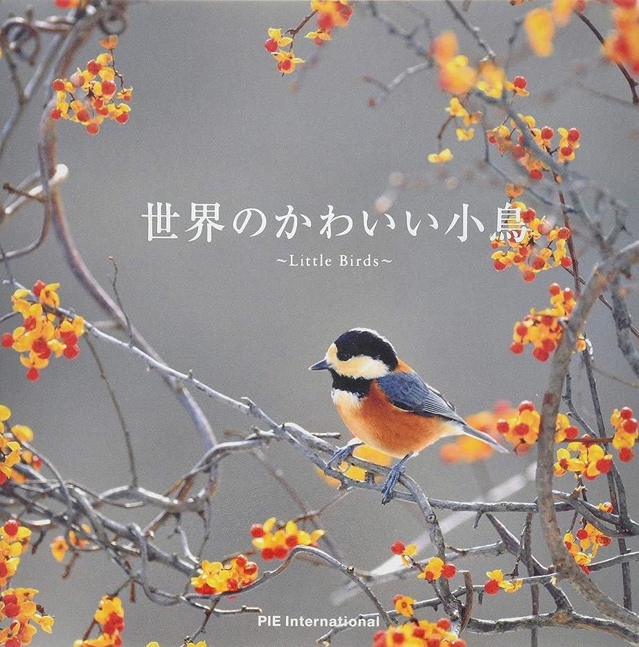 マッサージペルー多様体怪魚飼育マガジン GIGAS(ギガス) vol.02