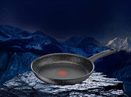 Amazon.com: Tefal Everest Stone Frying Pan with Thermospot ...