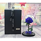 sexyrobot Beauty And The Beast Rose, Handmade Preserved Fresh Flower Real Rose with Fallen Petals in a Glass, with Exquisite Gift Box (Pink)