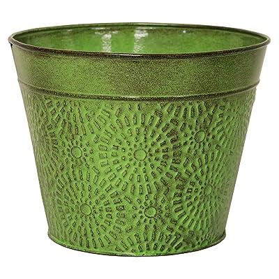 """Robert Allen Home & Garden MPT02016 Cove Series Planter, 6"""", Sweet Pea : Garden & Outdoor"""