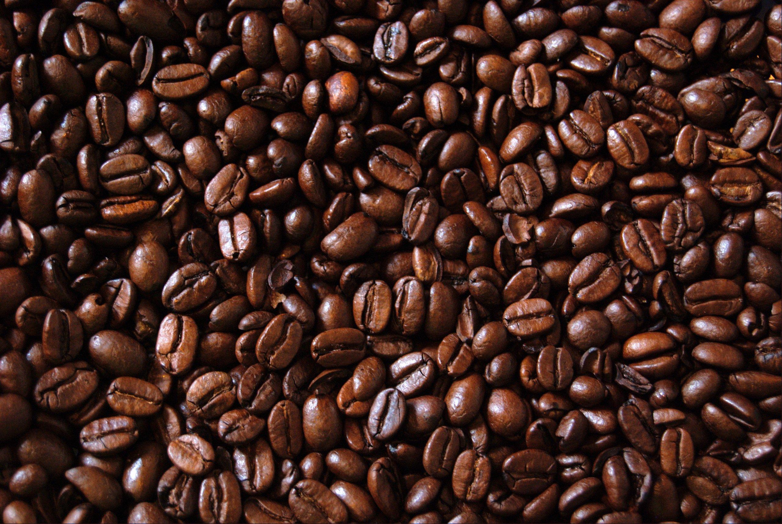 Peru Approcassi Cajamarca Fair Trade Shade Grown Organic Coffee Beans (Medium Roast (Full City +), 15 Pounds Whole Beans) by RhoadsRoast Coffees (Image #7)