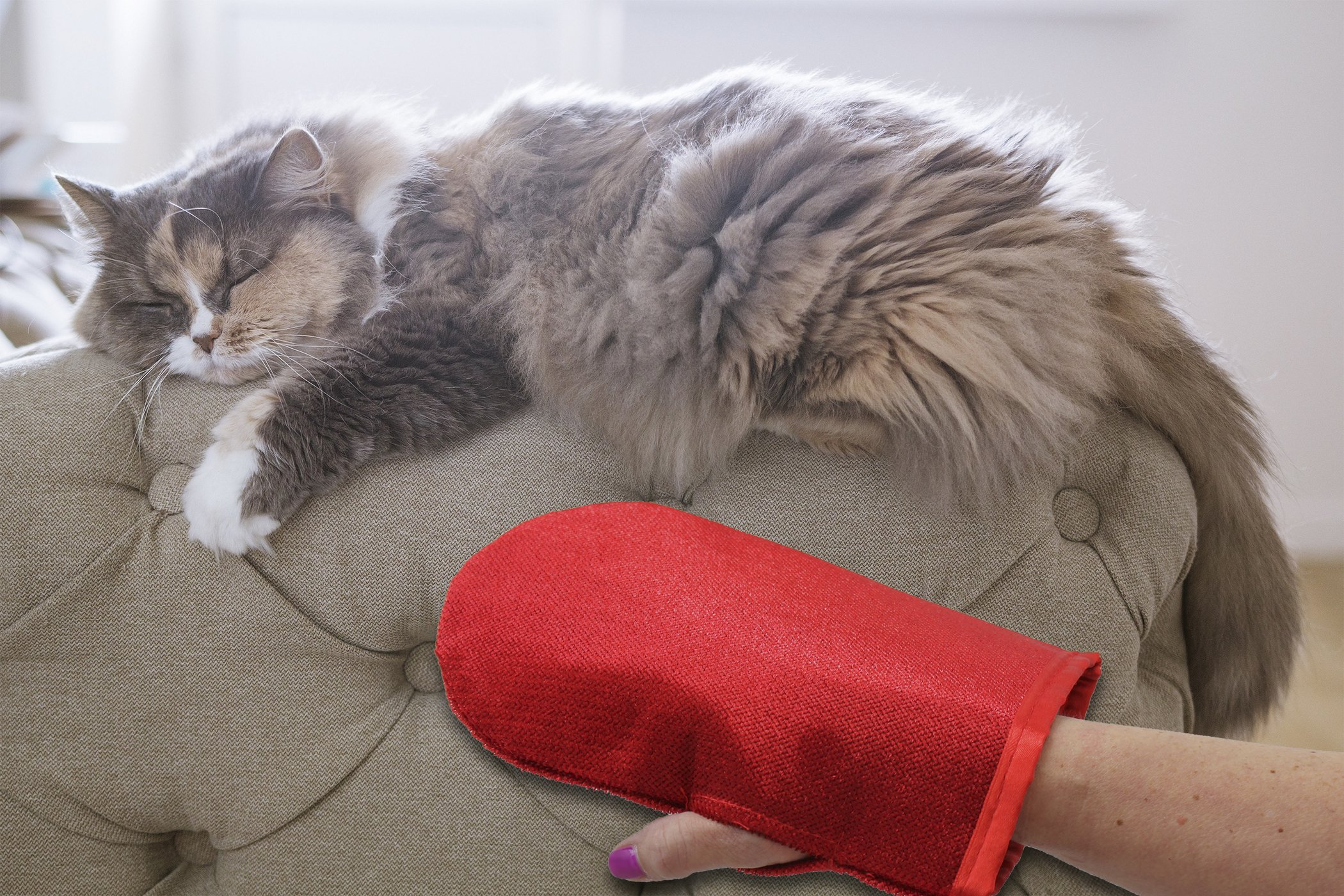 Evercare Pet Hair Remover Glove Pic-Up Mitt (2) and Magic Lint Brush (1) for Pets Clothes Furniture and Travel by Evercare (Image #3)