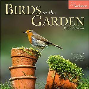 """Audubon Birds in The Garden Wall Calendar 2021 [12"""" x 12"""" Inches]"""