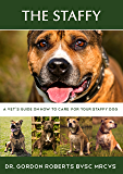 The Staffy: A vet's guide on how to care for your Staffy dog