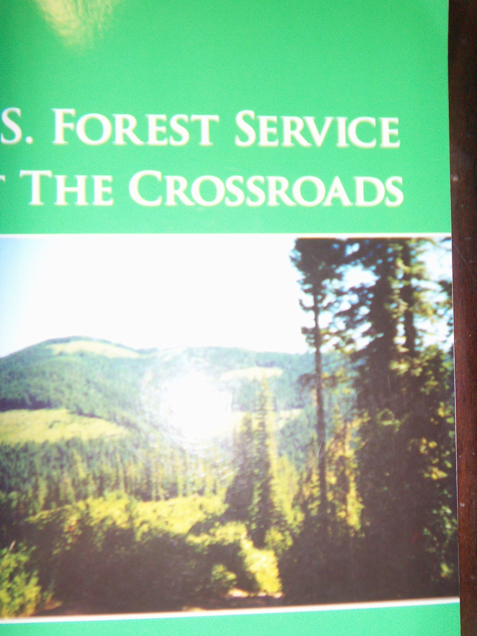U. S. Forest Service at the Crossroads ebook