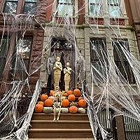 CHICIEVE 1000 m² Halloween stretch spinnenweb met 100 namaakspinnen voor kostuum, rekwisieten, indoor outdoor spookhuis…