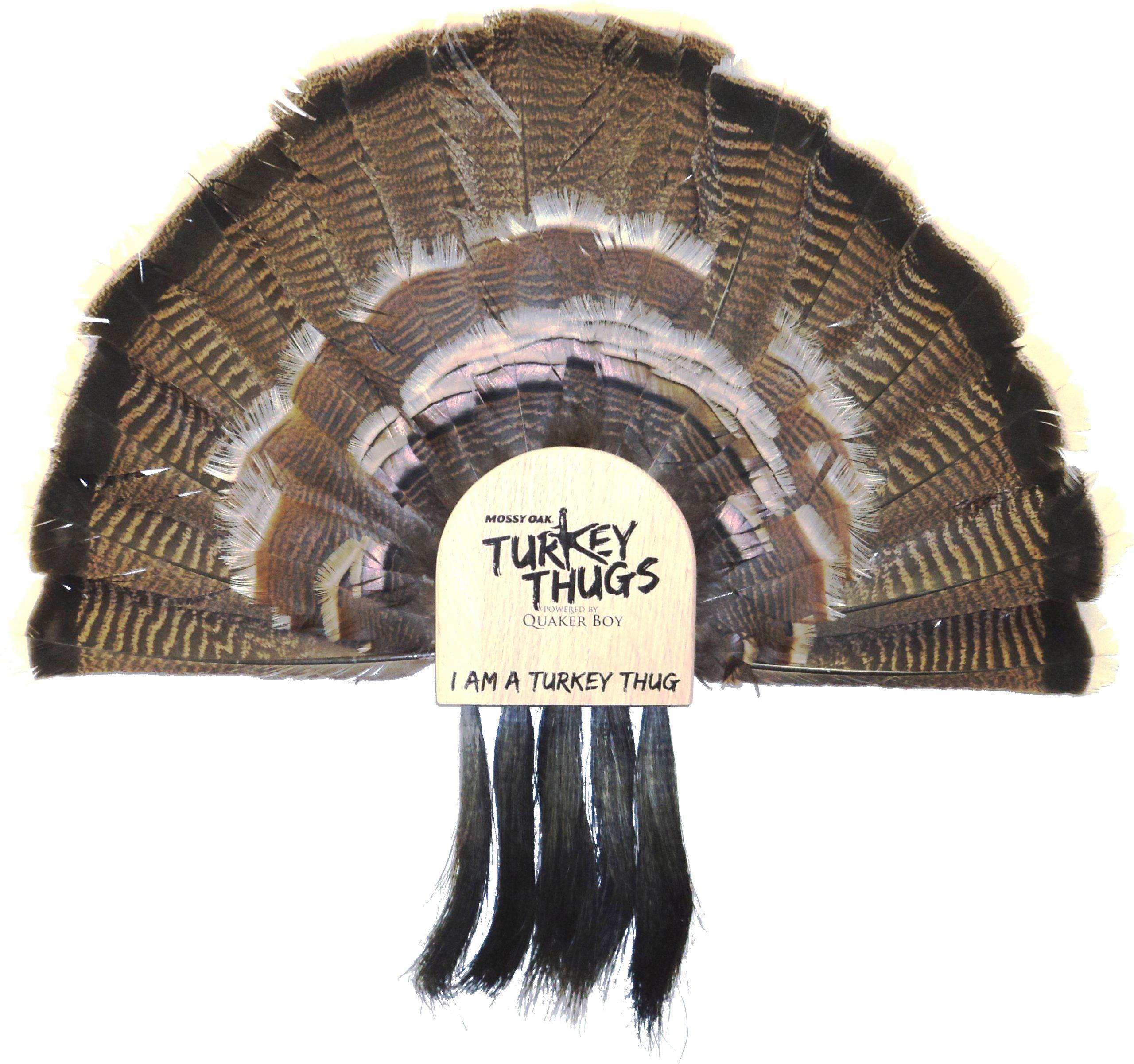 Quaker Boy Turkey Thugs Fan Mount 5 Beard Holder by Quaker Boy (Image #1)