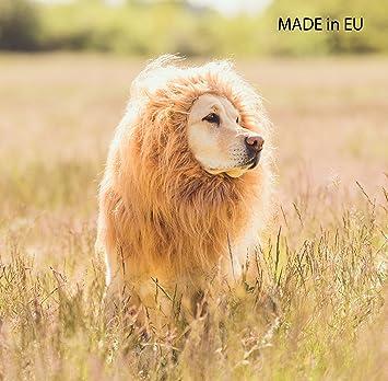 Leones Perros Disfraz – León crin para perros grandes para Carnaval – de Halloween – Peluca