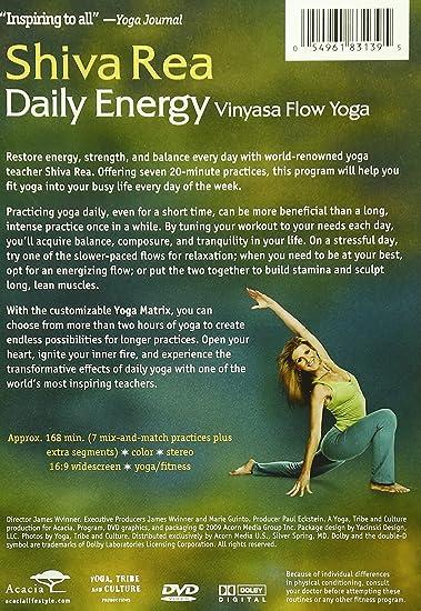 Daily Energy Flow [Reino Unido] [DVD]: Amazon.es: Cine y ...