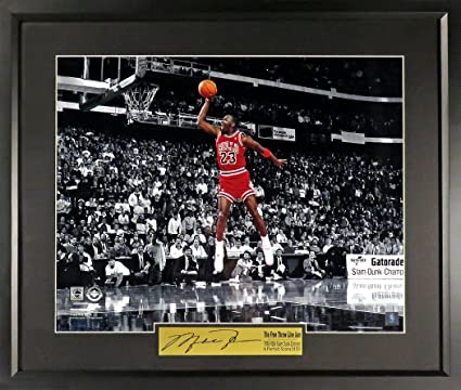 "704fb8bb5bc7 Chicago Bulls Michael Jordan ""Free Throw Line Dunk"" 16x20 Photograph (SGA  Signature Engraved"