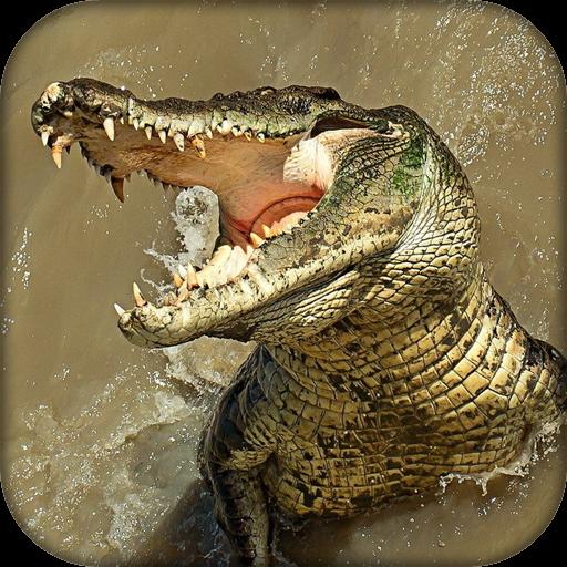 (Wildlife Angry Crocodile)