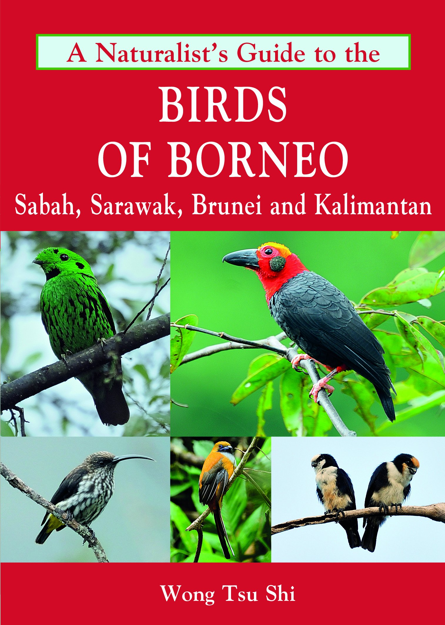 Download A Naturalist's Guide to the Birds of Borneo (Naturalists' Guides) pdf