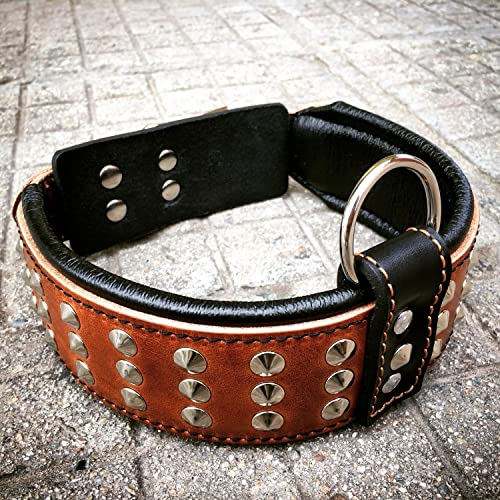 Bestia-Genuine-Leather-Dog-Collar-with-Studs-and-Soft-Leather-Cushion.-Wide