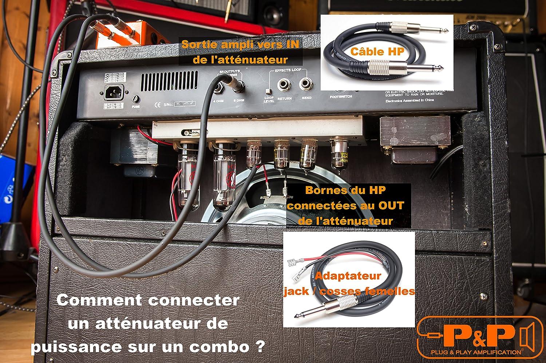Att/énuateur de puissance 22w 8 ohms P/&P Amplification
