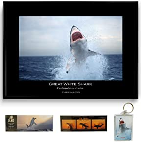 Shark Week Air Jaws Mini Set - Great White Shark A1 Poster, Two Magnets and Key Ring