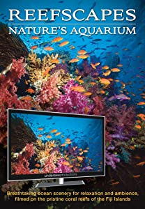 Reefscapes: Nature's Aquarium DVD, nature video of tropical fish and coral reefs filmed in the ocean, for relaxation and ambience