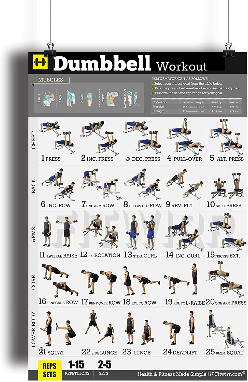 Amazon Com Dumbbell Workout Exercise Poster Laminated Home Gym Fitness Workouts For Men Build Muscles Burn Fat Lose Weight Strength Training Workout Fat Loss Bodybuilding Guide 18 X24 Sports Outdoors