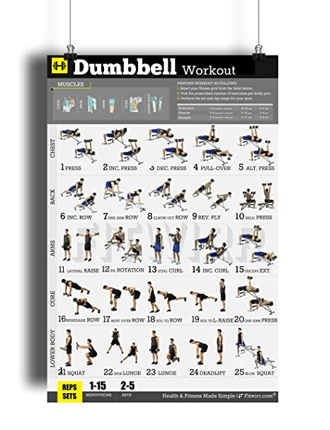 7c2a1ef2e14 Dumbbell Exercises Workout Poster - Now Laminated - Home Gym - Workout  Plans for Men - Free Weights - Strength Training Routines - Build Muscles -  Fat Loss ...