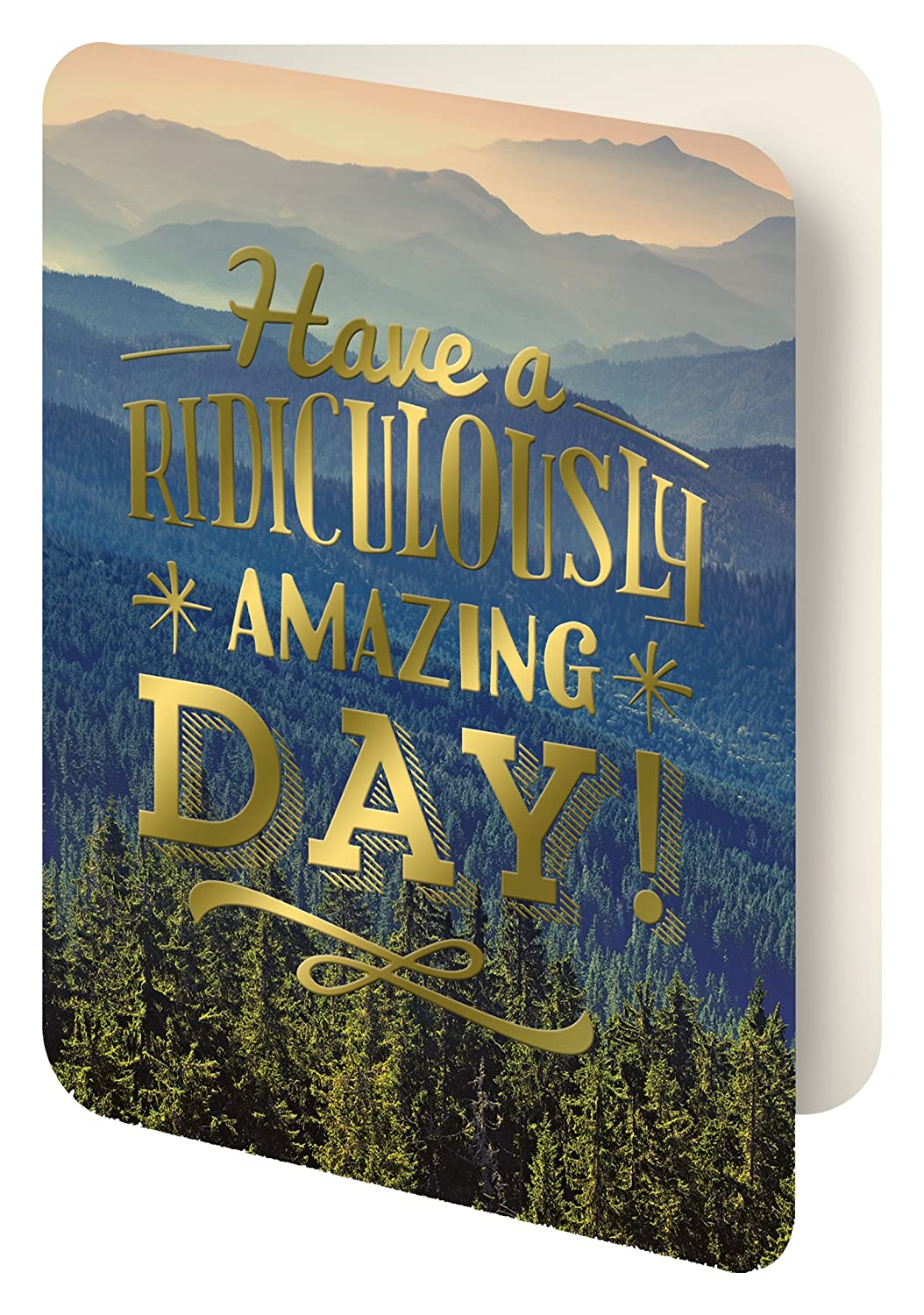 Studio Oh Foil Stamped Artisan Notecards Have A Ridiculously Amazing Day