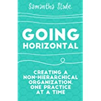 Going Horizontal: Creating a Non-Hierarchical Organization, One Practice at a Time