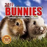 2017 Bunnies Calendar - 12 x 12 Wall Calendar - 210 Free Reminder Stickers